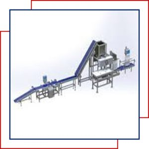 secondary-packaging-automation-line